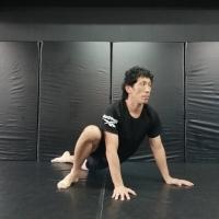 横浜の総合格闘技&キックボクシング&柔術 リバーサルジム「グランドスラムオンラインレッスン」 朝のアクティブストレッチサムネイル画像1